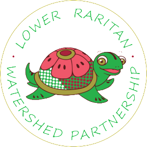 cropped-LRWP_TurtleLogo_vectorFinal.png