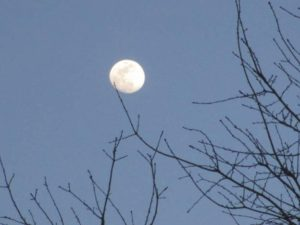 4.18.17 - Sapia - near full moon over Manalapan Brook in Monroe